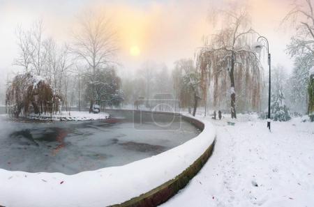 Lake in Ivano-Frankovsk city