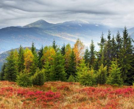 view of the Gorgan Hamster, Siniak, Javornik fall