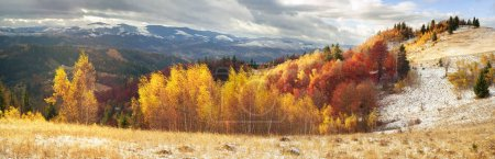 Carpathian mountains in cold autumn