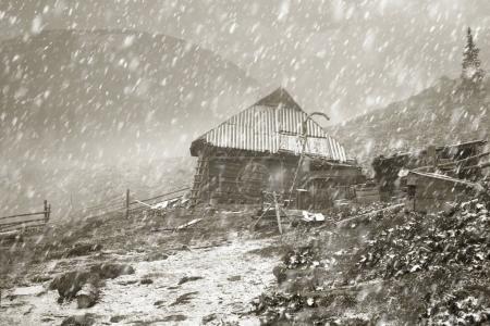 spring snowstorm on Chernogora