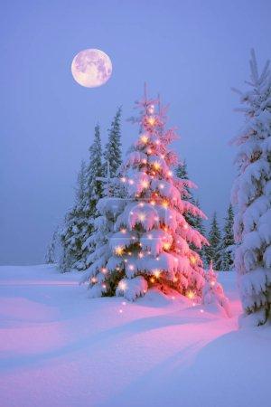 Frosty winter night of Christening