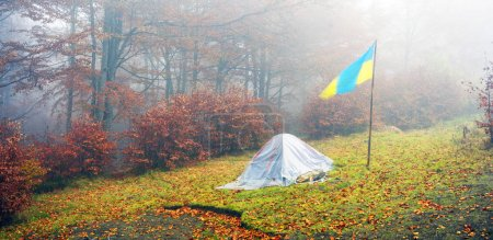 Tent backfilled with yellow leaves
