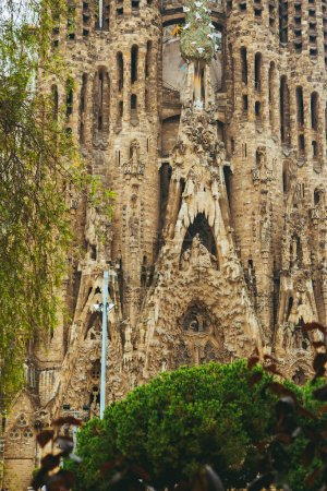 Amazing Sagrada Familia details in Barcelona