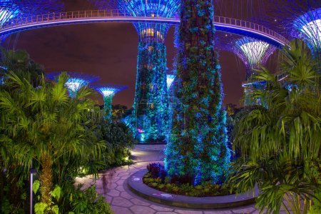 May 20 2017 Singapore Night