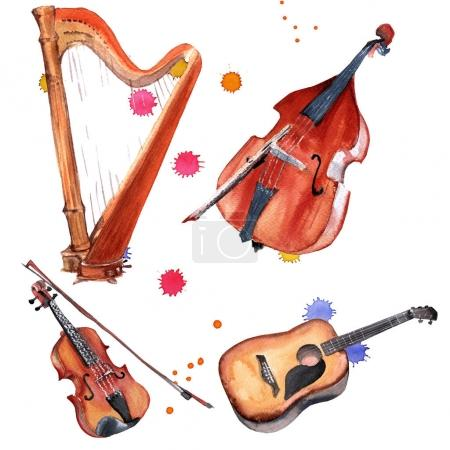 Musical instruments set. Harp, violin, double bass and guitar. Isolated on white background.