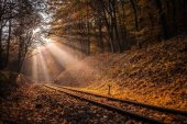 Budapest, Hungary - Rising sun falls on the railroad track leading through the autumn forest at Huvosvolgy
