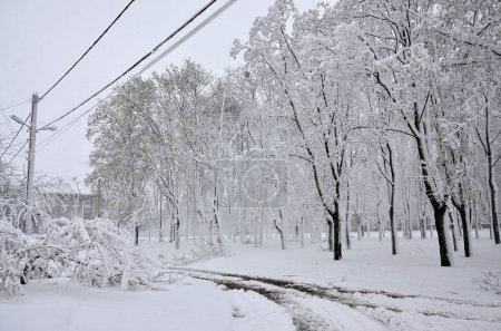 KHARKOV, UKRAINE - April 19, 2017: Unexpected rapid fallout of snow in April on the Kharkov streets. Cold and unfavorable winter conditions in the middle of spring