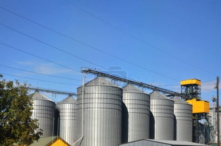Steel silos for grain storage and processing facilities. Modern elevator