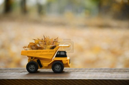 The concept of seasonal harvesting of autumn fallen leaves is de
