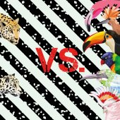 Print a funny image of a battle of tropical birds vs leopards Vector Wallpaper beach on a striped black and white background