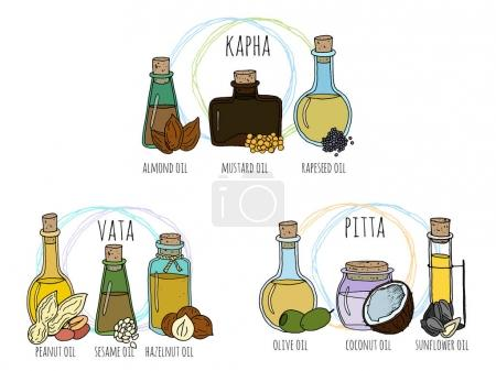 Illustration for Set of hand drawn vector bottles with different massage oils. Selection oils for pitta, kapha and vata doshas. Ayurvedic therapy. - Royalty Free Image