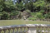 the Tsing Yi Park at nature view