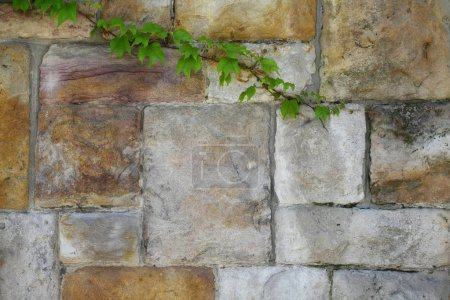 Photo for Stone wall closeup detail - Royalty Free Image