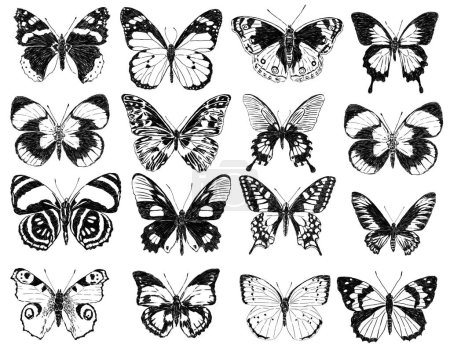 Photo pour Main, dessin de la Butterflies♥ divers. - image libre de droit