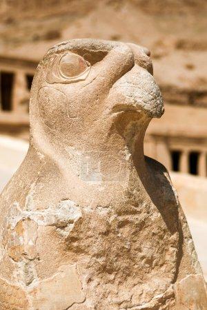 Staue of Horus, Queen Hatshepsut Temple, Egypt...