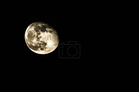 Photo for Disk of the moon in the night sky - Royalty Free Image