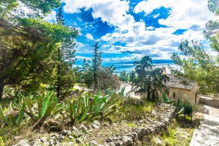 Marjan landscape nature outdoors. / Scenic view at landscape in Split, Marjan hill walkway, Dalmatia region.