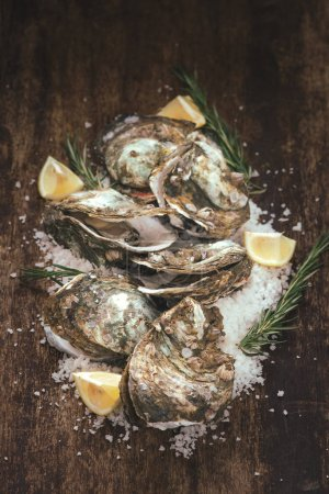 Photo for Dozen fresh oysters and sea salt on wooden table. Top view - Royalty Free Image