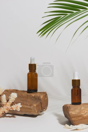 Photo pour Serum or essential oil in tropical style with leave, rocks,  sea sehlls on white background. Beauty product concept. - image libre de droit