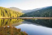 Small Arber lake in the autumn, Bavaria, Germany