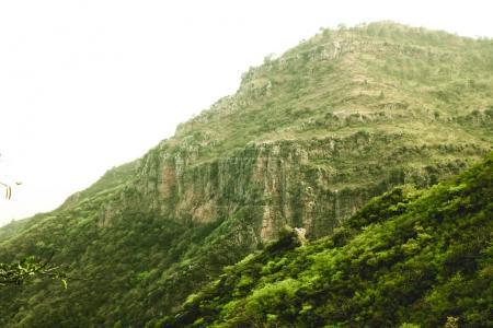 mountains green grass