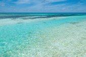 Tropical seascape in Maldives