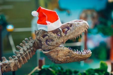 Dinosaur Santa Claus close up