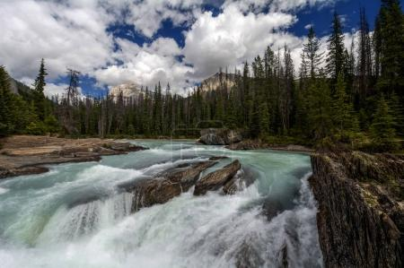 Picturesque waterfall landscape