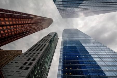 city with tall buildings