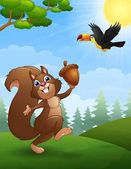 Squirrel and bird toucan cartoon in the jungle