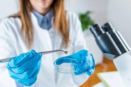 Scientific laboratory research. Technician in  laboratory at work