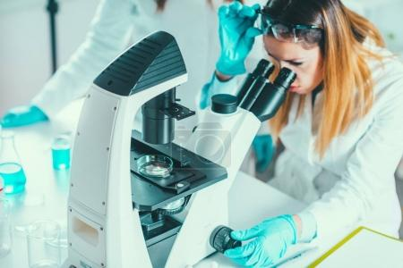 Life science research, female researcher placing sample under the microscope