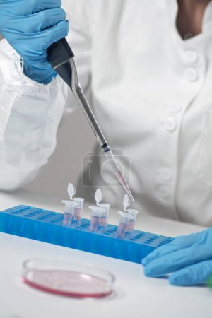 Scientific researcher working in laboratory