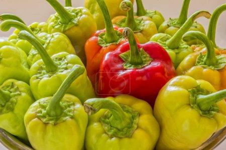 Foto de El fresco maduro amarillo verde pimiento rojo en un plato, cosecha propia cosecha otoño - Imagen libre de derechos