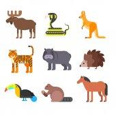 Vector flat style set of animals. Hedgehog, tiger, snake.