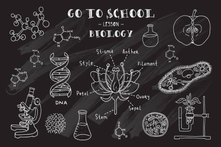 Illustration for Hand drawn signs of biology theme. Vector illustration. - Royalty Free Image