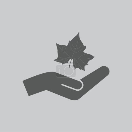 Illustration for Maple Leaf Silhouette for your design. vector illustration - Royalty Free Image