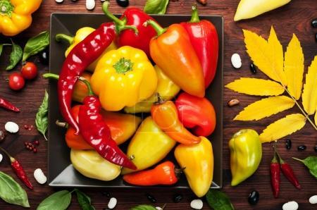 Photo pour Poivrons jaunes et rouges de différentes variétés sur une assiette carrée. Légumes crus. Récolte des aliments - image libre de droit