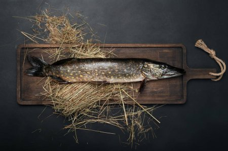 Raw fish (pike) on a brown cutting board, black background.