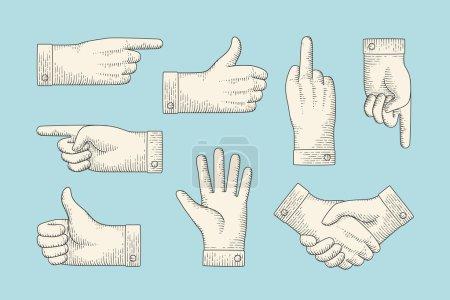 Illustration pour Ensemble de dessin vintage de signes à la main avec doigt pointeur, pouces levés, arrêt, poignée de main dans le style rétro gravure. Vieux panneau de pointage dessiné, panneau d'information et de navigation. Illustration vectorielle - image libre de droit
