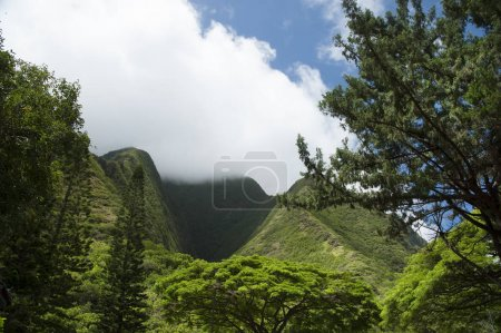 West Maui Mountains Rise Into Clouds