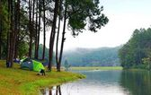Young man with green camping tent in pine tree forest near the l