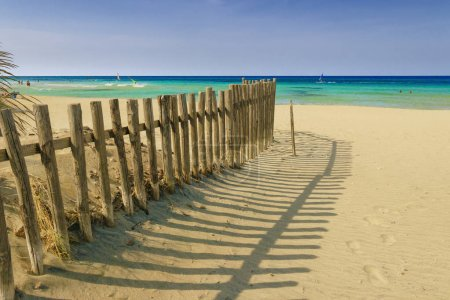 Summertime.The Regional Natural Park Dune Costiere (Torre Canne): fence between sea dunes. (Apulia)-ITALY- The park covers the territories of Ostuni and Fasano along eight kilometers of coastline.