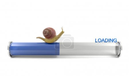 Snail crawling on download bar, conceptual image showing slow internet downloading