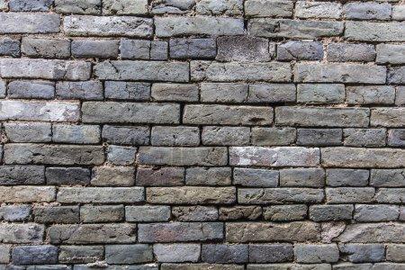Photo pour Fond de mur vintage en béton fissuré, vieux mur ? Mur de briques vertes - image libre de droit