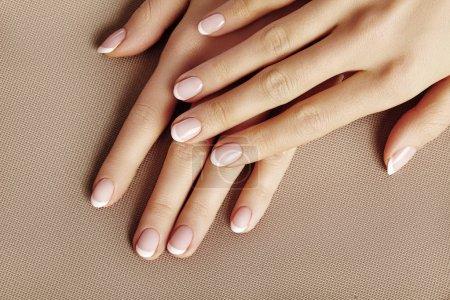 Photo pour Jeune femelle palmier sur fond beige. Glamour belle manucure. Style Français. Vernis à ongles. Soucie de mains et des ongles, peau propre - image libre de droit