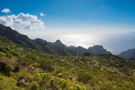 Nature near Masca Village, Tenerife