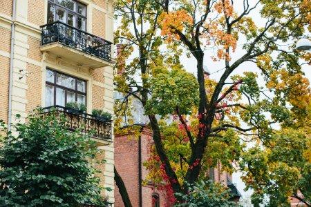 Autumn city in Europe