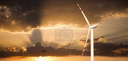 Wind generator on a background of sunset sky