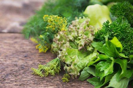 Fresh vegetables close-up.